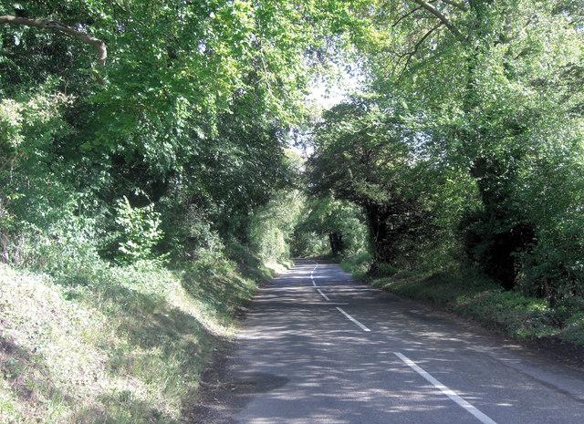 Aldworth Road north of Beche Park Wood