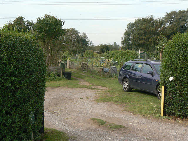 Allotments at Lees Barn Road