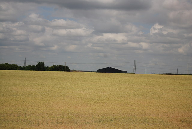 Rural landscape by the A11