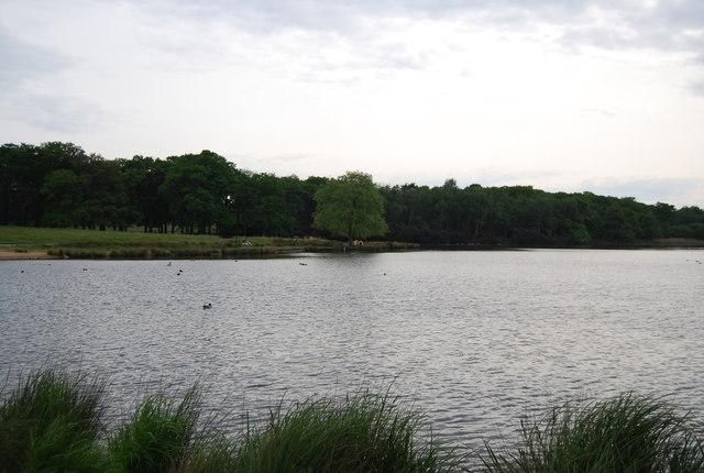 Pen Pond, Richmond Park