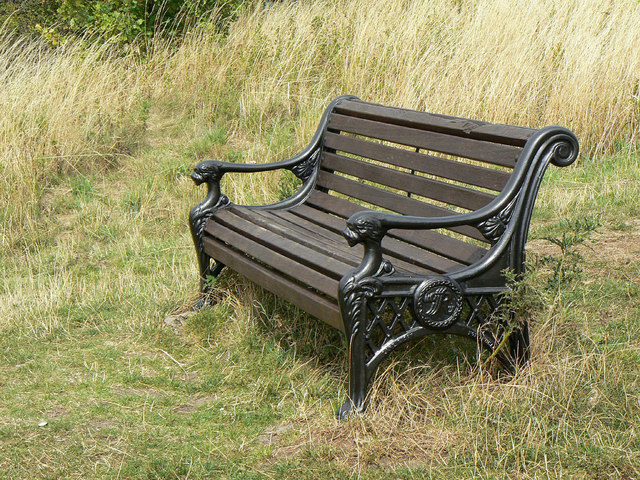 Seat on Dewberry Hill