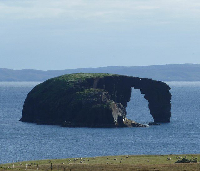 Dore Holm - The Drinking Horse