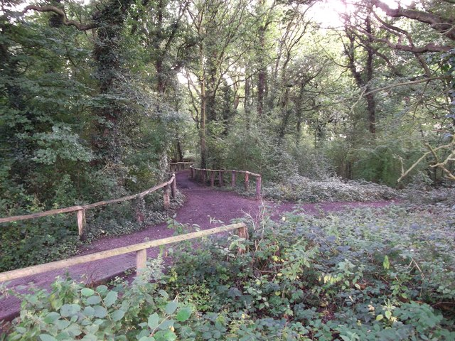 Track in Thornet Wood