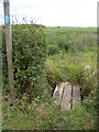 TM2557 : Footbridge of the footpath to Sandy Lane by Adrian Cable