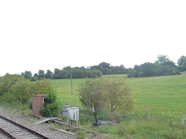 West Berkshire : Grassy Hillsides