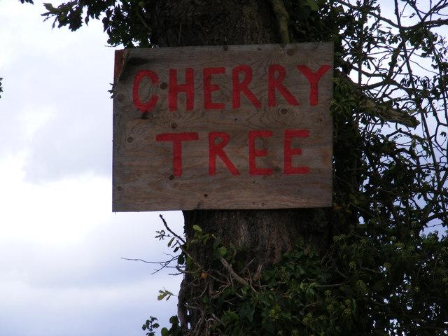 Cherry Tree Farm sign