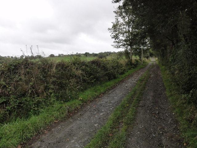 Track to Rhos-goch fawr