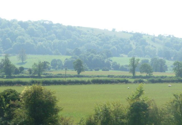 West Wiltshire : grassy field