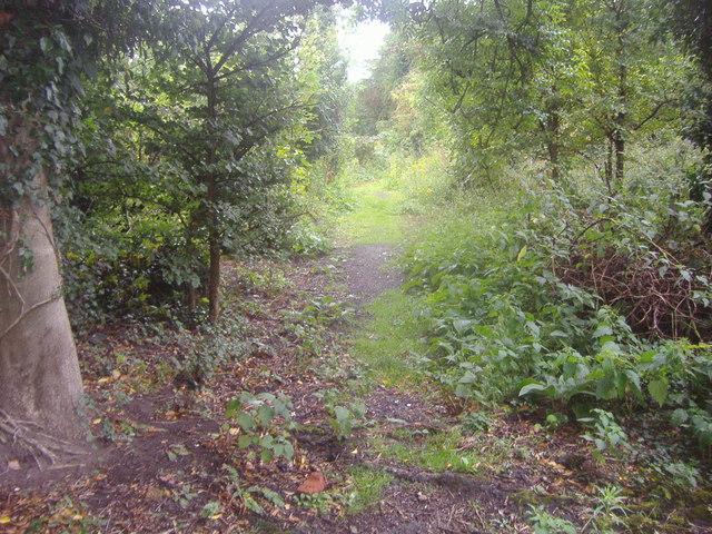 Path off Reigate Road, Betchworth
