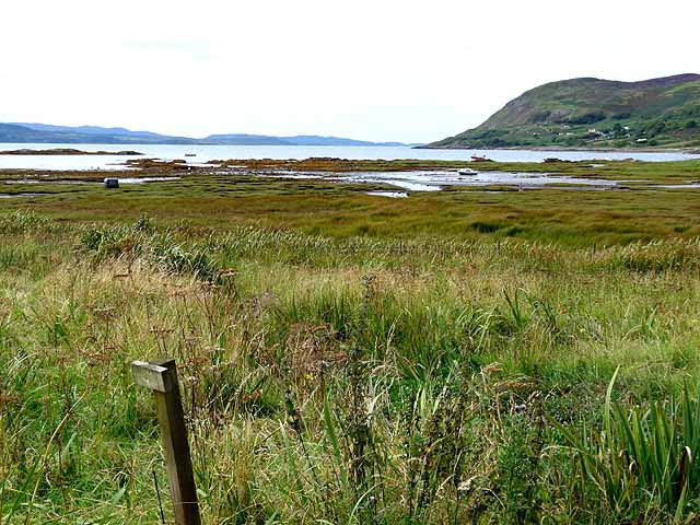 Salt marsh at the head of Kilchoan Bay