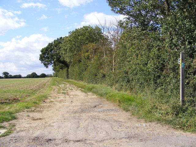 Footpath to Hall Lane