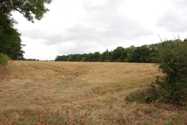 Field on the side of the B5314