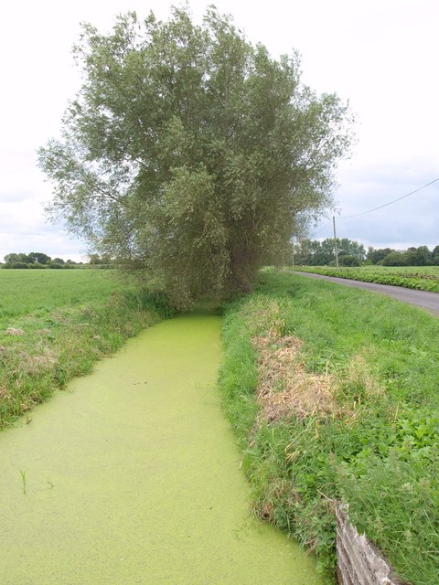 Panborough Drain Diversion