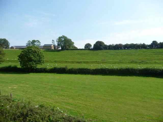 South Somerset : Grassy Field