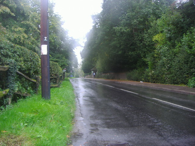 Main Road, Knockholt