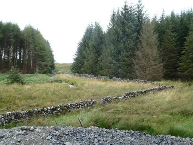 Old boundary dyke near Lamb Knowes