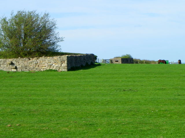 Pillbox near Boulmer