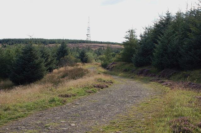 Track on Langton Edge