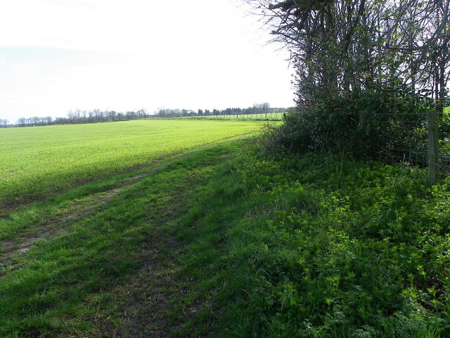 Footpath to Longhoughton