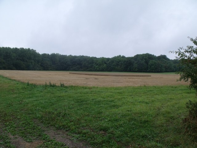 Field with unharvested central area