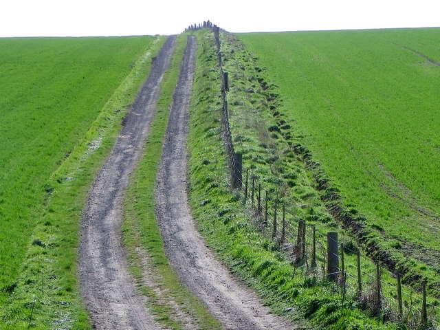 Farm track near Craster