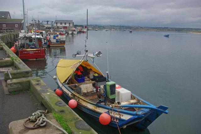 Fishing vessels at Amble