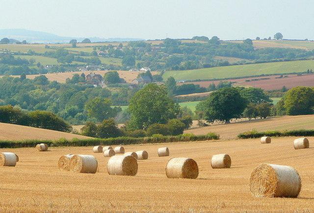 Herefordshire landscape