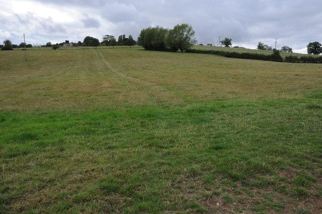 Field near Cockbury Butts