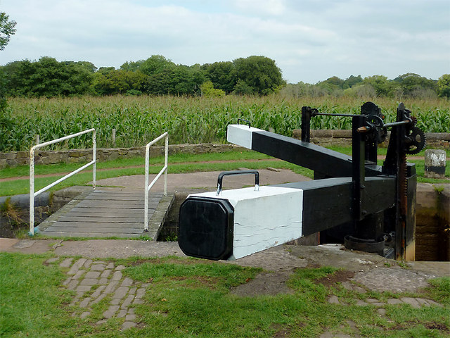 Lock gate beams and maize field near Church Lawton, Cheshire