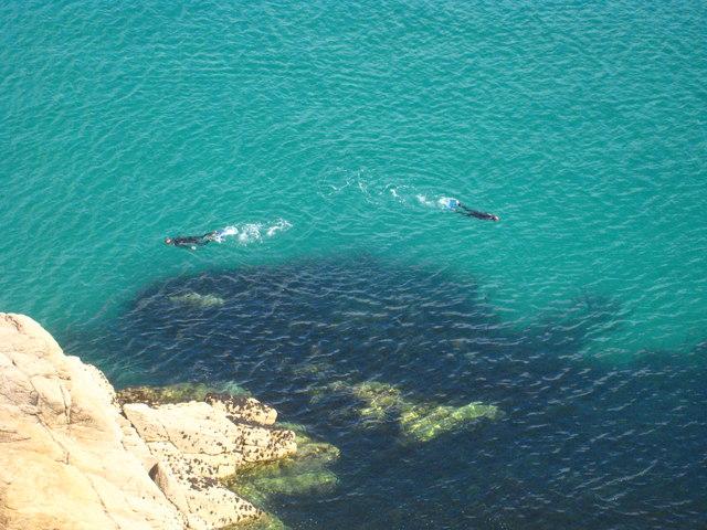 Snorkellers below the Minack