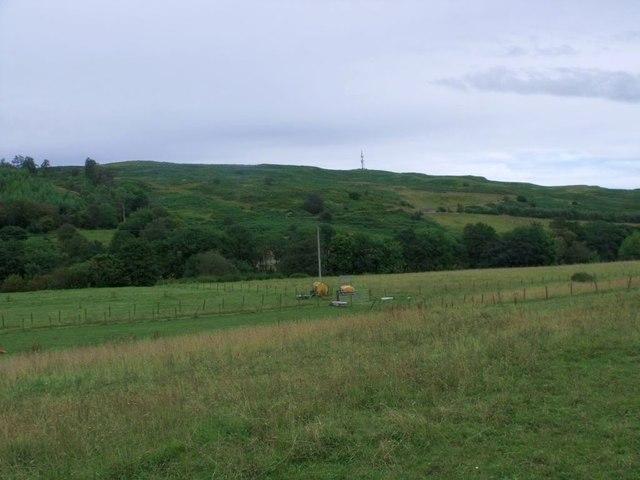 Longbedholm, riverside pasture