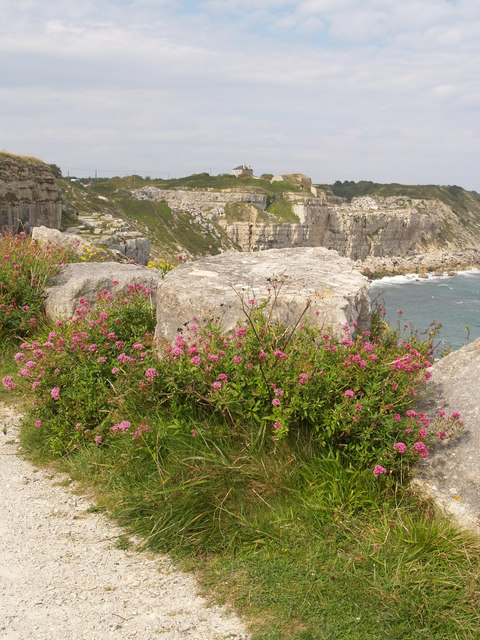 The South West Coast Path at God Nore