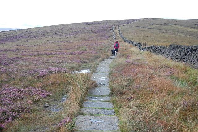 Path along The Tors