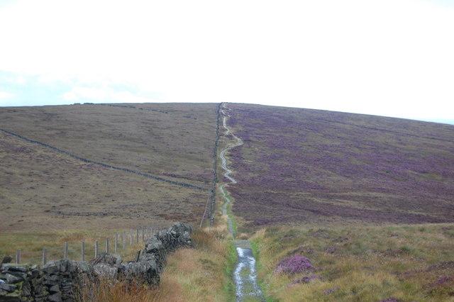 Path to Shining Tor