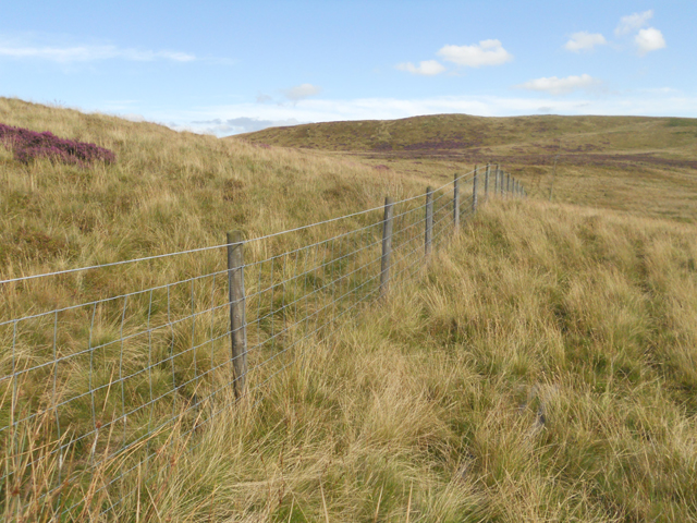 Boundary fence to the Berwyn Nature Reserve