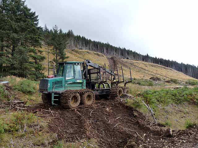 Forest forwarder near Lettermore
