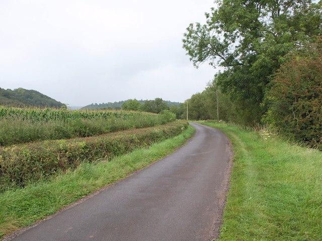 Ashmoor Drove