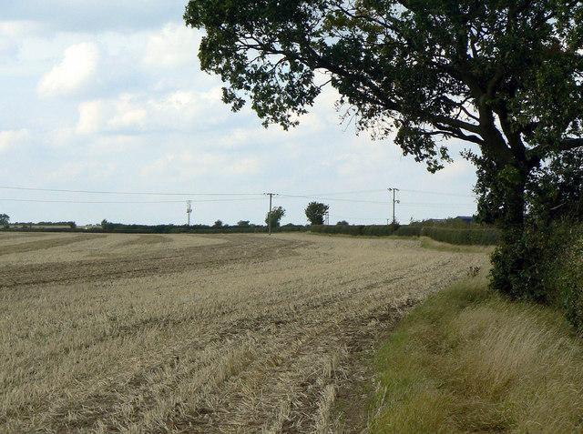 Field footpath near Cropwell Butler
