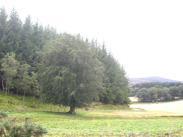 Minor road at Cot Hill