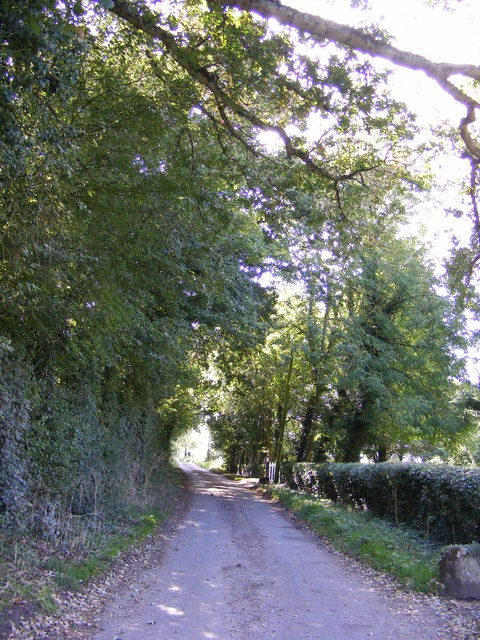 The road to Bastings Hall