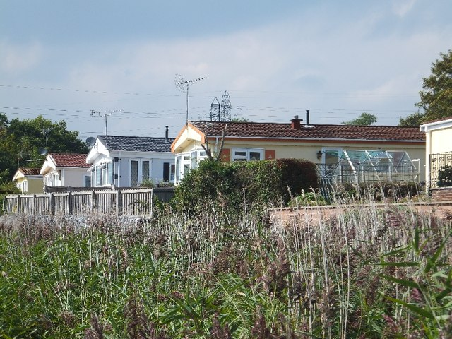 Homes in Newport Park and reed beds