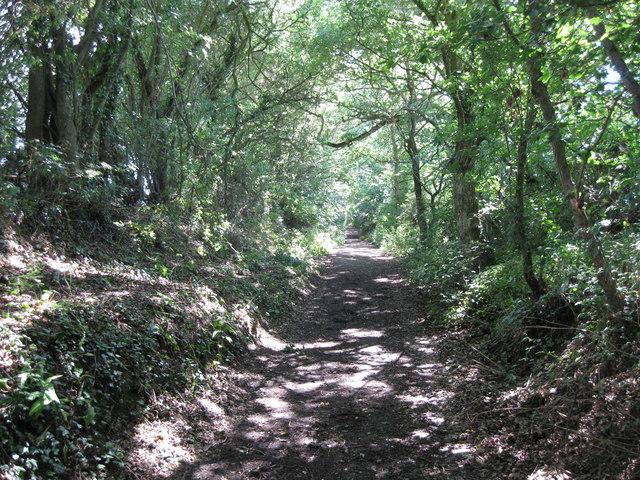 Birchwood Lane Byway