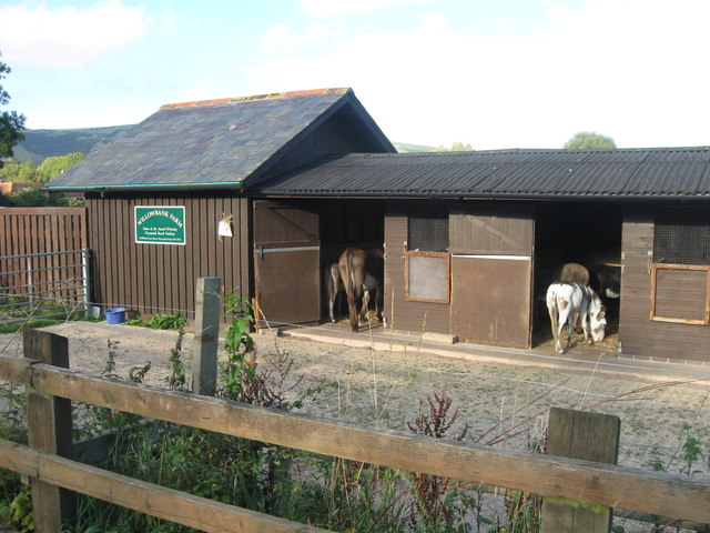 Willowbank Farm, home of Weymouth beach donkeys