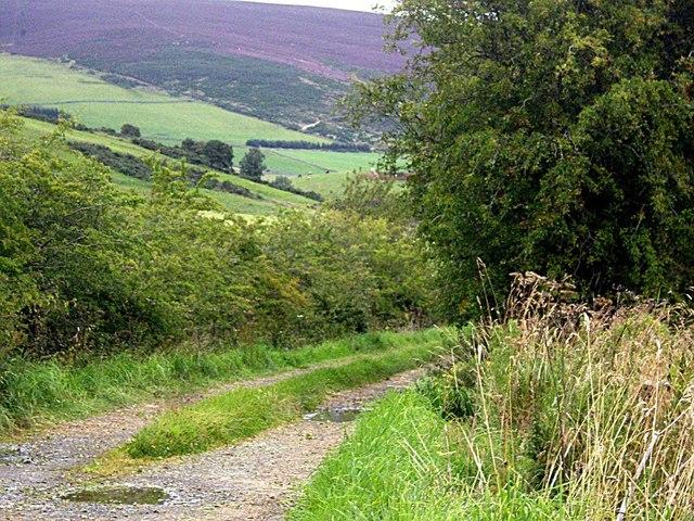 Access track to Ord farm