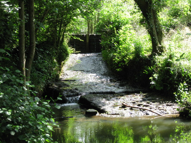 Sluice and weir on Candlestick Brook in Lord's Wood