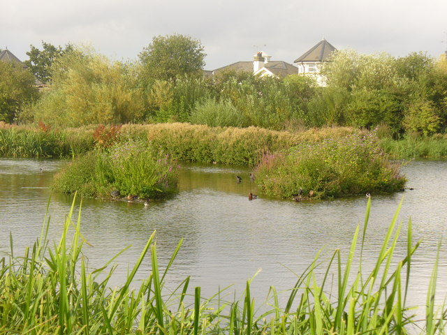 Reedy Inlet, London Wetland Centre