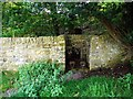 NZ0737 : Chapel Walls Well, Wolsingham by Andrew Curtis