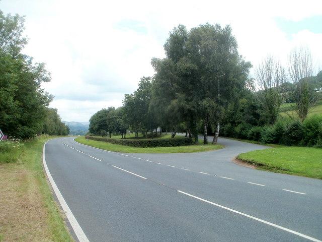 Tree-lined picnic area, Talybryn