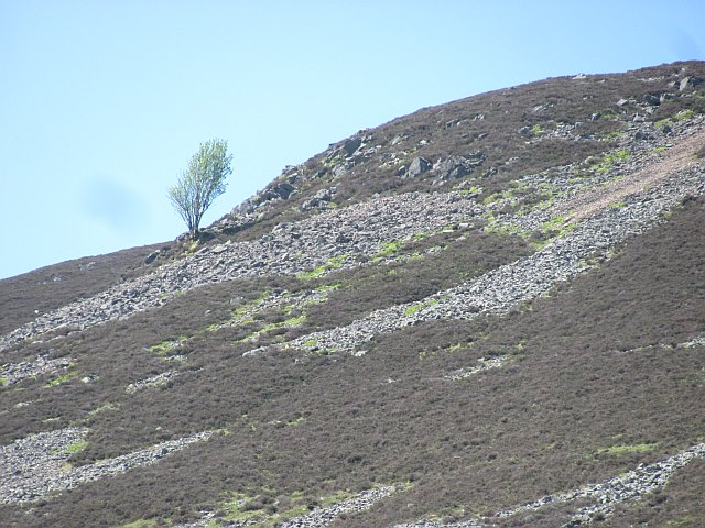 Slopes of Glen Tilt