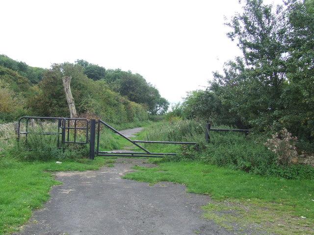 Path at Herrington Hill, near Sunderland